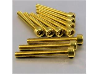 【PRO BOLT】內六角螺絲套件 M6X1X50MM Pro-Bolt 鋁合金 金色 10個一組【歐洲進口商品】 - 「Webike-摩托百貨」