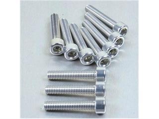 【PRO BOLT】內六角螺絲套件 M6X1X30MM Pro-Bolt 鋁合金 銀色 10個一組【歐洲進口商品】 - 「Webike-摩托百貨」