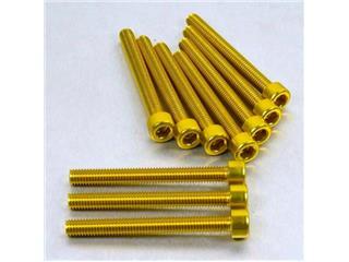 【PRO BOLT】內六角螺絲套件 M6X1X55MM Pro-Bolt 鋁合金 金色 10個一組【歐洲進口商品】 - 「Webike-摩托百貨」