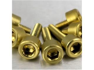 【PRO BOLT】內六角螺絲套件 Pro-Bolt 油箱 鋁合金 金色 7個一組 Honda【歐洲進口商品】 - 「Webike-摩托百貨」