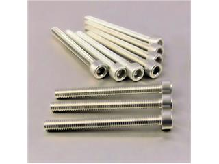 【PRO BOLT】內六角螺絲套件 M6X1X60MM Pro-Bolt 鋁合金 銀色 10個一組【歐洲進口商品】 - 「Webike-摩托百貨」