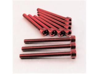 【PRO BOLT】內六角螺絲套件 M6X1X60MM Pro-Bolt 鋁合金 紅色 10個一組【歐洲進口商品】 - 「Webike-摩托百貨」