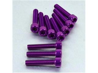 【PRO BOLT】內六角螺絲套件 M6X1X30MM Pro-Bolt 紫色 鋁合金 10個一組【歐洲進口商品】 - 「Webike-摩托百貨」