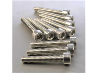 【PRO BOLT】內六角螺絲套件 M6X1X40MM Pro-Bolt 鋁合金 銀色 10個一組【歐洲進口商品】 - 「Webike-摩托百貨」