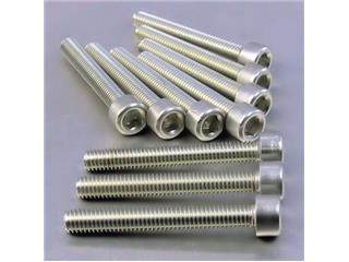 【PRO BOLT】內六角螺絲套件 M6X1X45MM Pro-Bolt 鋁合金 銀色 10個一組【歐洲進口商品】 - 「Webike-摩托百貨」
