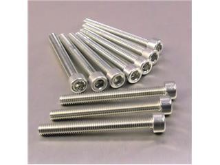 【PRO BOLT】內六角螺絲套件 M6X1X55MM Pro-Bolt 鋁合金 銀色 10個一組【歐洲進口商品】 - 「Webike-摩托百貨」