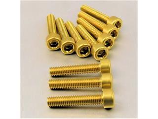 【PRO BOLT】內六角螺絲套件 M6X1X40MM Pro-Bolt 鋁合金 金色 10個一組【歐洲進口商品】 - 「Webike-摩托百貨」