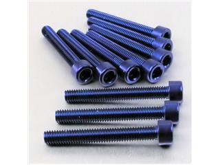 【PRO BOLT】內六角螺絲套件 M6X1X45MM Pro-Bolt 鋁合金 藍色 10個一組【歐洲進口商品】 - 「Webike-摩托百貨」