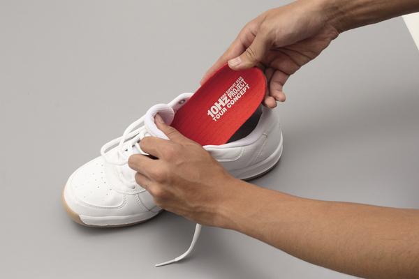 【DAYTONA】旅遊概念鞋墊 (M) - 「Webike-摩托百貨」