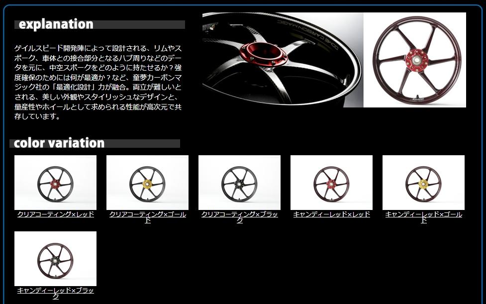【GALE SPEED】碳纖維複合輪框 【TYPE-D】 後輪 - 「Webike-摩托百貨」