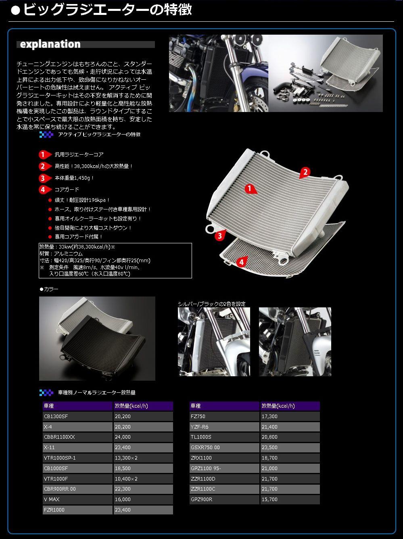 【ACTIVE】加大 散熱器(水箱) 套件 - 「Webike-摩托百貨」