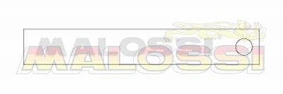 【MALOSSI】鍍鉻・Malossi logo22cm 貼紙 - 「Webike-摩托百貨」