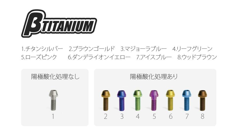 βTITANIUM ベータチタニウム βチタニウム:フロントキャリパー マウントチタンボルトキット