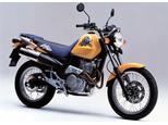 SLR650 ビガー