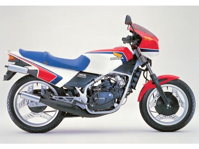 MVX250F全年式・全型式
