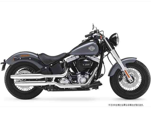 FLSS SOFTAIL SLIM S全年式・全型式