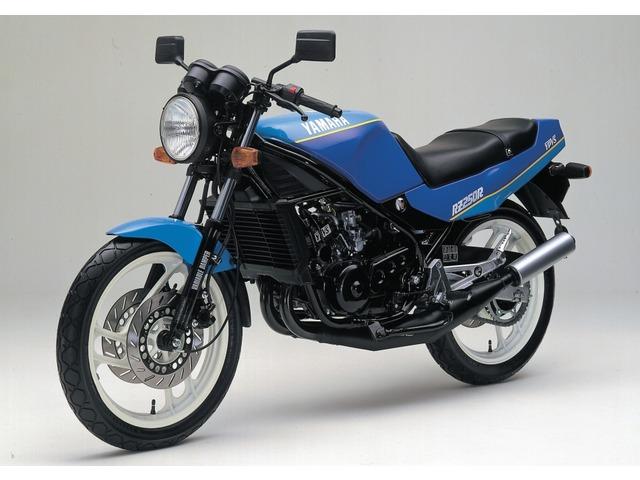 RZ250R全年式・全型式