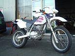 XR250/ホンダ 250cc 宮城県 ビークルダディー
