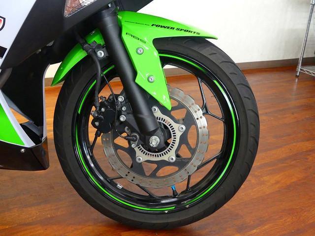 ニンジャ250 Ninja 250 ウィルスウィンサイレンサー フェンダーレス