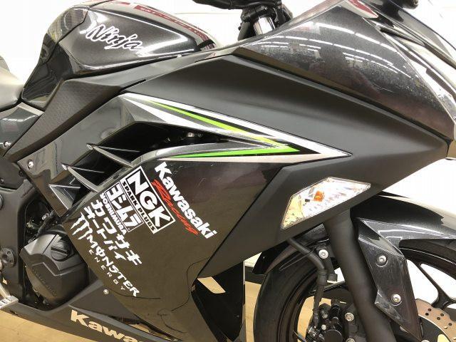 ニンジャ250 Ninja 250 ワンオーナー ヨシムラマフラー フェンダーレス 万が一の盗難保険…