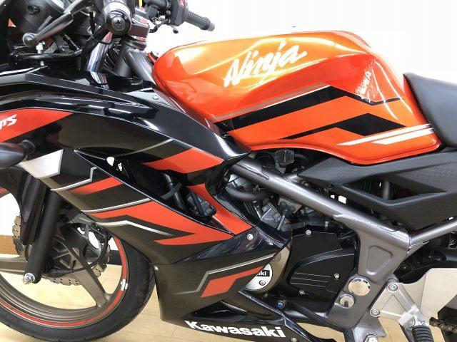 ニンジャ150RR Ninja RR150 ワンオーナー ノーマル 下取りにも自信があります!ぜひご…