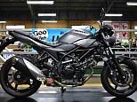 SV650X/スズキ 650cc 神奈川県 ユーメディア小田原