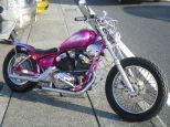 ビラーゴ250(XV250)/ヤマハ 250cc 神奈川県 HotRodder (ホットローダー)
