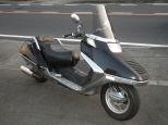 フュージョン/ホンダ 250cc 神奈川県 HotRodder (ホットローダー)