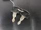 thumbnail モンキー モンキー AB27型 キャブレターモデル 常時100台以上の在庫台数!
