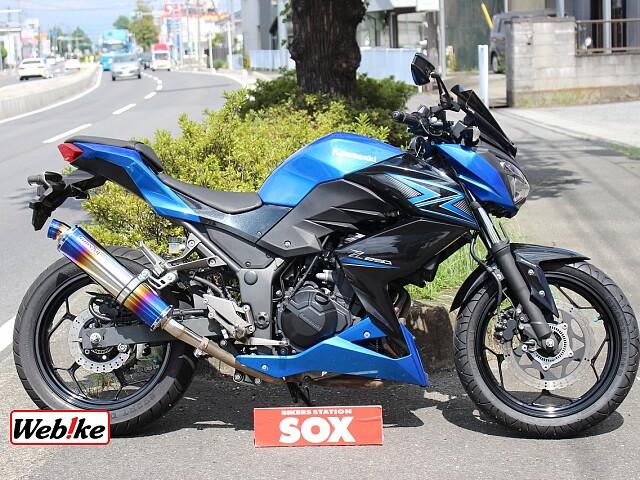 Z250 ABS ビームスマフラー 1枚目:ABS ビームスマフラー