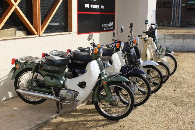 原付から大型バイク取扱