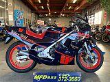RG250ガンマ/スズキ 250cc 神奈川県 モトフィールドドッカーズ横浜店(MFD横浜店)