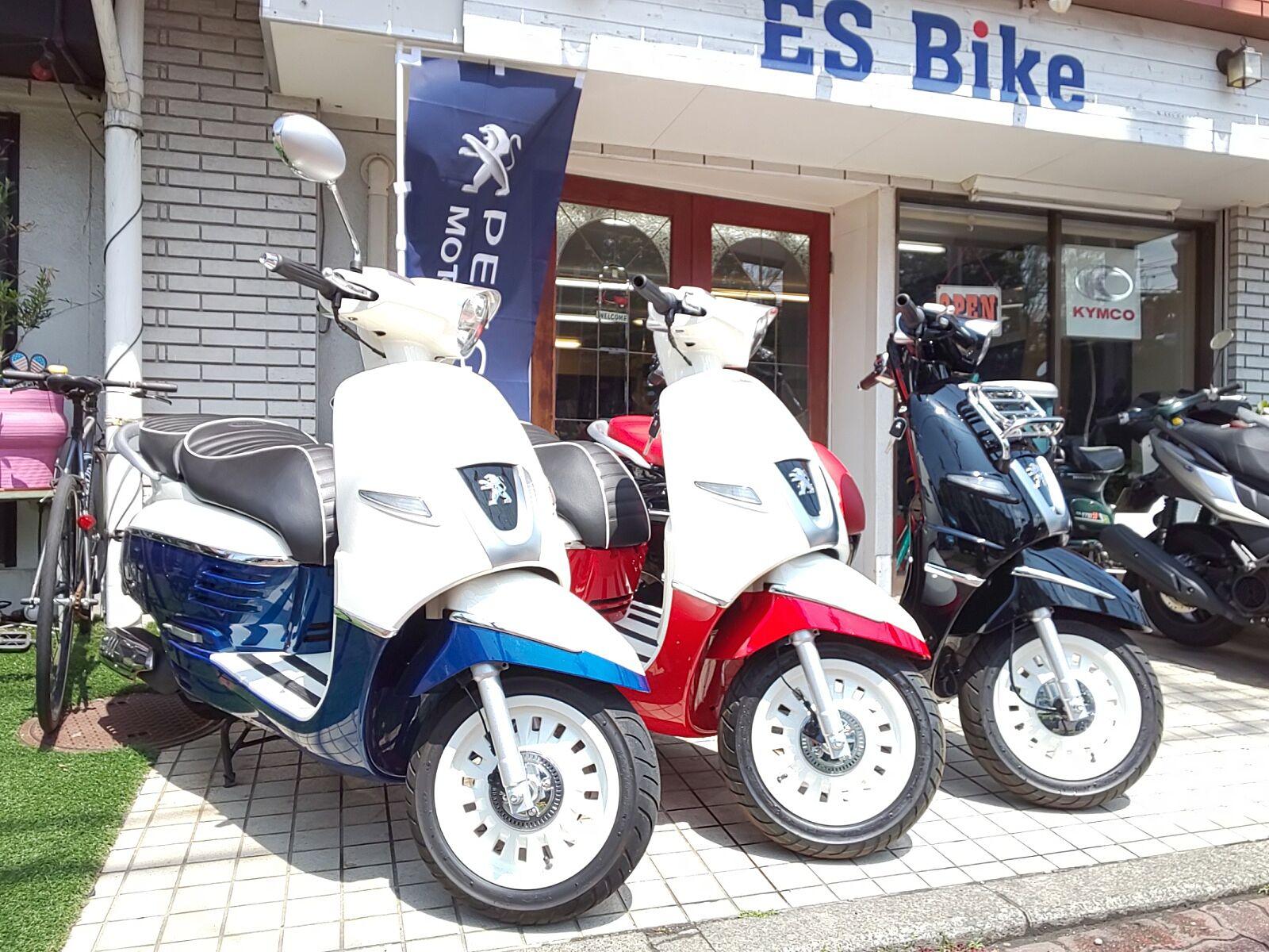 ES Bike