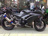 ニンジャ250/カワサキ 250cc 京都府 S&SCYCLES