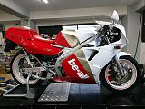 TZR250/ヤマハ 250cc 東京都 Seeks
