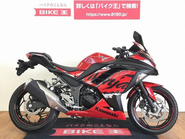 ニンジャ250 Ninja 250 2017年式 カスタムスクリーン