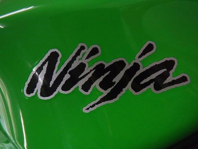 ニンジャ250 NINJA250 変幻自在の乗り手を選ばぬ1台!カスタム多数で… 9枚目:NINJA…