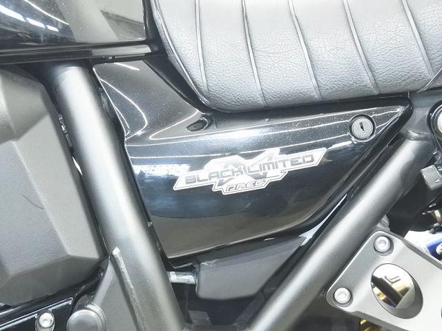 ZRX1200ダエグ ZRX1200 DAEG ブラックリミテッド 21052