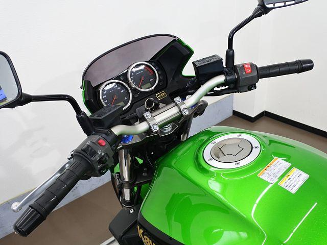 ZRX1200ダエグ 22175 ZRX1200 DAEG 正規取扱店特別仕様車