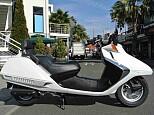 フュージョン/ホンダ 250cc 神奈川県 湘南ジャンクヤード