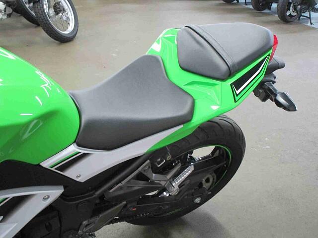 ニンジャ250 Ninja250 SE 8枚目Ninja250 SE