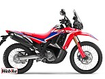 CRF250 RALLY/ホンダ 250cc 大阪府 バイク館SOX大東店