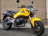 グロム/ホンダ 125cc 神奈川県 MotorLifeShopベースキャンプ