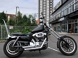 XL1200L SPORTSTER LOW