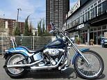 FXSTC SOFTAIL CUSTOM/ハーレーダビッドソン 1584cc 神奈川県 ユーメディアハーレー中古車センター