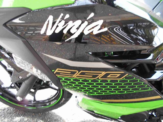ニンジャ250 【新車在庫あり】即納可能です! Ninja250 KRT 5枚目【新車在庫あり】即納…