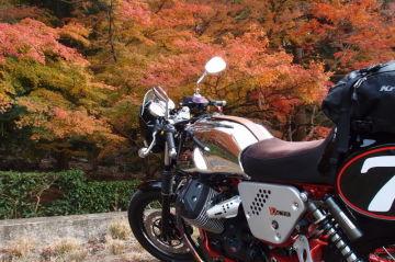 Tomozouさん:「V7Racer [レーサー]」とオーナーレビュー