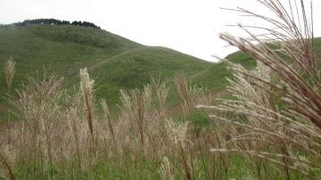 秋の名勝調査 奈良 曽爾高原へ | Webikeツーリング