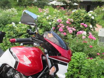 CB400sfで「軽井沢」までバラのお花見ツーリングに行ってきた! 【長野県】 | Webikeツーリング