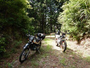 ブログ更新~オートバイの旅~justa2ofus-kzblues.com  「豊田市禁断B林道。【with M氏】2021.7.31(土)」 | Webikeツーリング